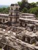 Sección Palenque